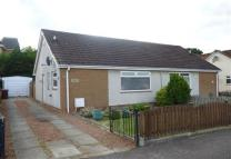 2 bedroom semi detached house to rent in Chestnut Grove, Larkhall...