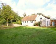 Detached Bungalow to rent in Benhall, Nr Saxmundham