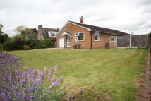 Detached Bungalow to rent in 10 Mill Lane, Goostrey...