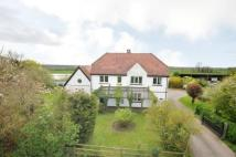 4 bedroom Equestrian Facility house for sale in Hicks Forstal Road...