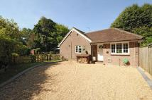Detached Bungalow for sale in Church Lane, Walberton...