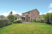 Detached house for sale in Harberton Crescent...