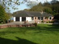 Bungalow in Woods End, Bramerton...