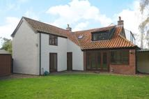Cottage for sale in Maypole Green, Toft Monks