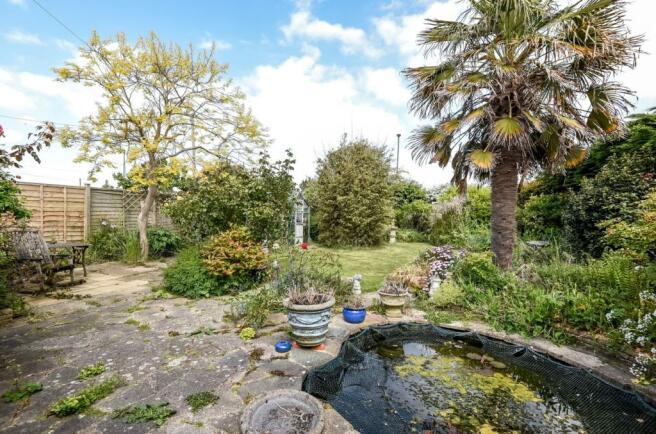 garden + pond
