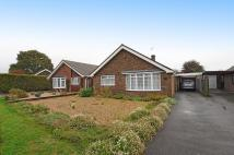 3 bed Detached Bungalow in Goodwood Court...