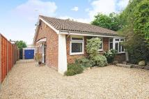 3 bedroom Detached Bungalow for sale in Lauder Close...
