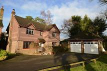 4 bed Detached property for sale in Home Way, Petersfield...