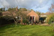 2 bedroom Bungalow for sale in Terwick Rise...