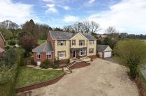 Detached property for sale in Catherington Lane...