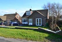 3 bedroom Detached Bungalow in Hambledon Road...