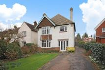 Detached home in The Avenue, Petersfield...