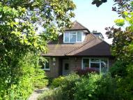 Detached Bungalow for sale in Parkhurst Road, Bexley...