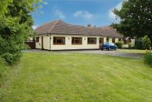 4 bedroom Detached Bungalow in Parsonage Lane, DA14
