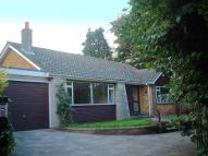 3 bed Detached Bungalow for sale in Arbuthnot Lane, Bexley...