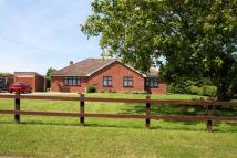 3 bedroom Detached Bungalow for sale in Clay Lane, St. Osyth...