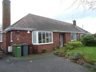 Bungalow to rent in Ashley Road...