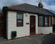 2 bed Semi-Detached Bungalow in Cedar Road, Willenhall