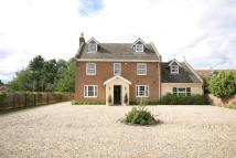 Detached house to rent in NEWMARKET, SUFFOLK