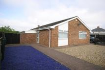 Detached Bungalow to rent in Exning, Suffolk