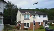 1 bed semi detached home to rent in Canberra Close, Exeter
