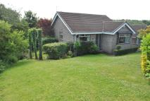 2 bed Detached Bungalow in Thorpefield Drive...