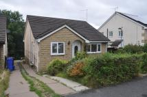 3 bed Detached Bungalow in Paterson Close...