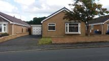 Detached Bungalow to rent in Chapel Road, Chapeltown