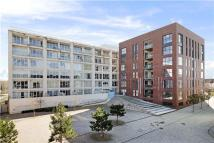 Flat to rent in Airpoint, Sky Park Road...