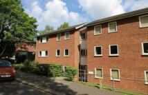 Sylvan Road Apartment to rent