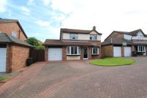 4 bed Detached home in Haversham Close, Benton...