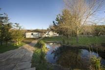 Equestrian Facility house in Waren Mill, Belford...