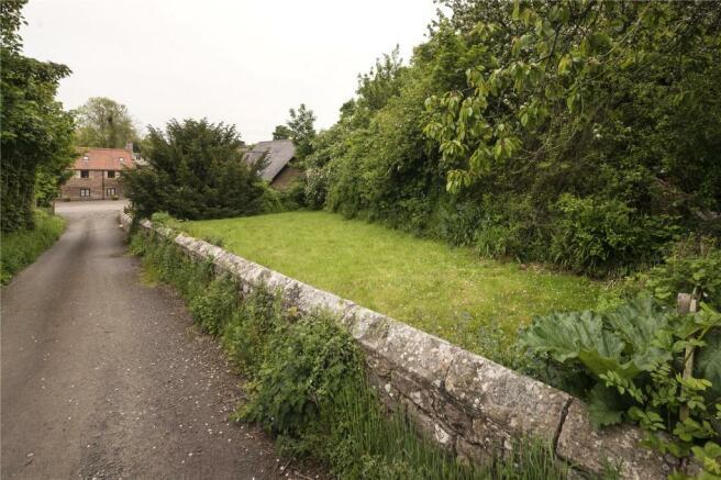 Side Garden/Plot