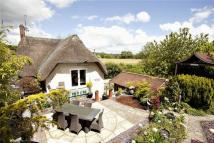 3 bed Link Detached House for sale in Burcombe Lane, Burcombe...