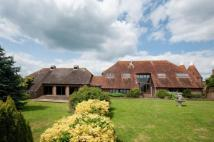 Detached property for sale in Boreham Street Farm...