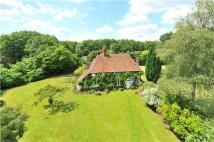 Detached house for sale in Thursley Road, Elstead...