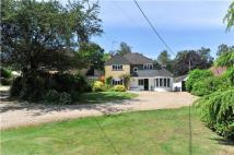 4 bed Detached property in Gasden Copse, Witley...