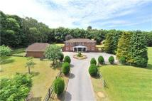 5 bed Detached home in Gasden Copse, Witley...
