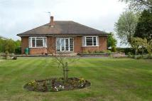4 bedroom Detached Bungalow in Main Road...
