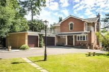 Detached property in Waveney Hill, Lowestoft...