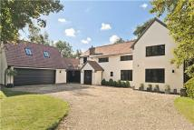 Equestrian Facility property in Warren Lane, Cottered...