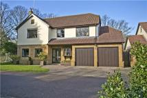 5 bedroom Detached home in White House Close...