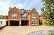Detached property in The Park, St. Albans...