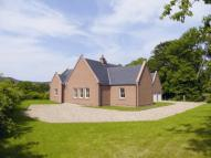 new home for sale in Breda Park, Alford...