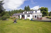 3 bed Detached house in Harewood, Parkhill, Dyce...