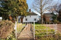 3 bed Detached home in Chitty Lane, Chislet...