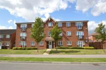 Flat for sale in Cunningham Avenue...