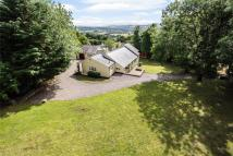 4 bed Detached property in Wern Road, Rhosesmor...