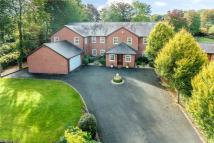 6 bed Detached property for sale in Sunnyridge Avenue...