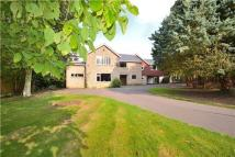 Beacon Hill Detached property for sale